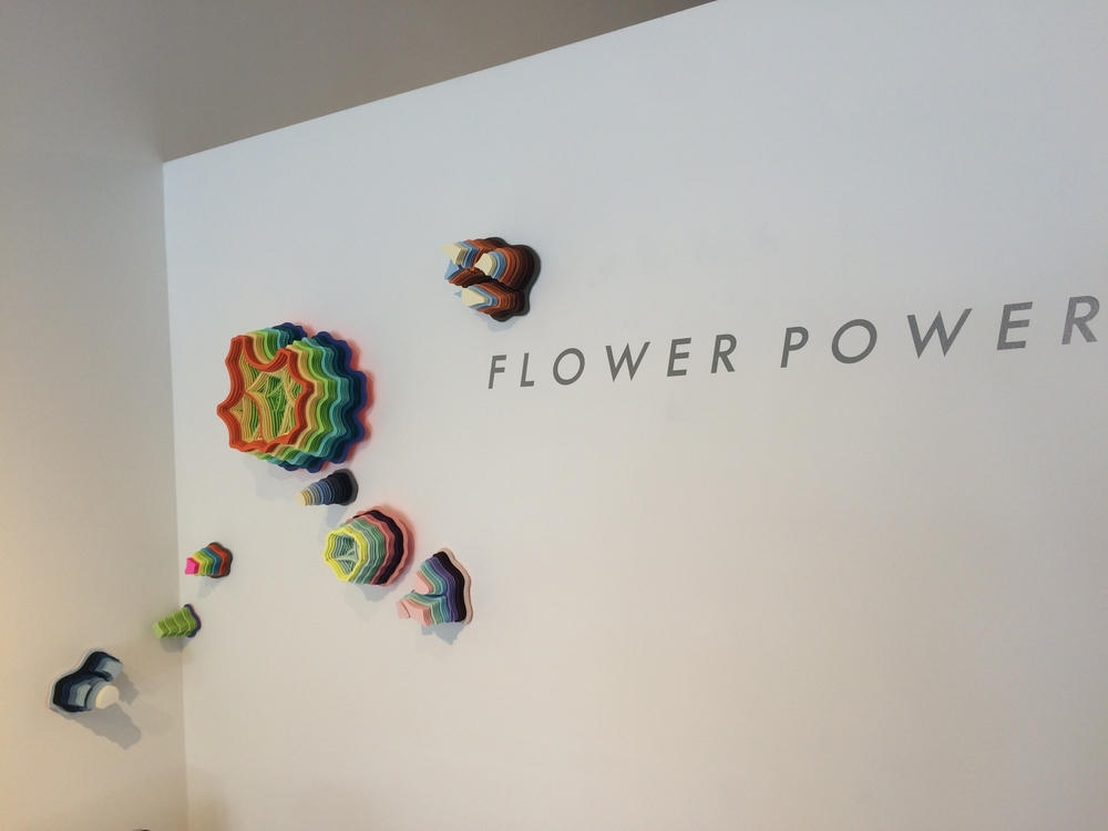Installation view,  Flower Power  group exhibition, 2016