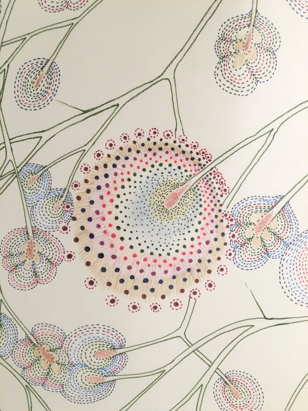 Sarah Morejohn,  Cracked Dandelion Tree  (detail), 2016, ink and colored pencil on paper, 30 x 22 inches (unframed), $1600. (framed)