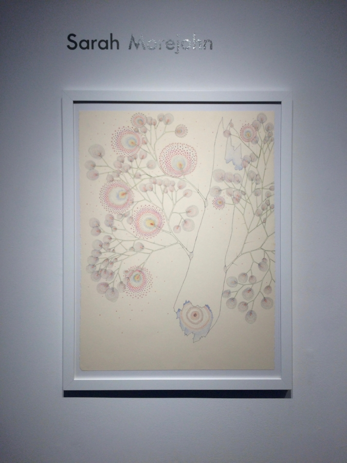 Installation view, Sarah Morejohn,  Broken Dandelion Tree , 2016 ink and colored pencil on paper, 30 x 22 inches (unframed), $1600. (framed)