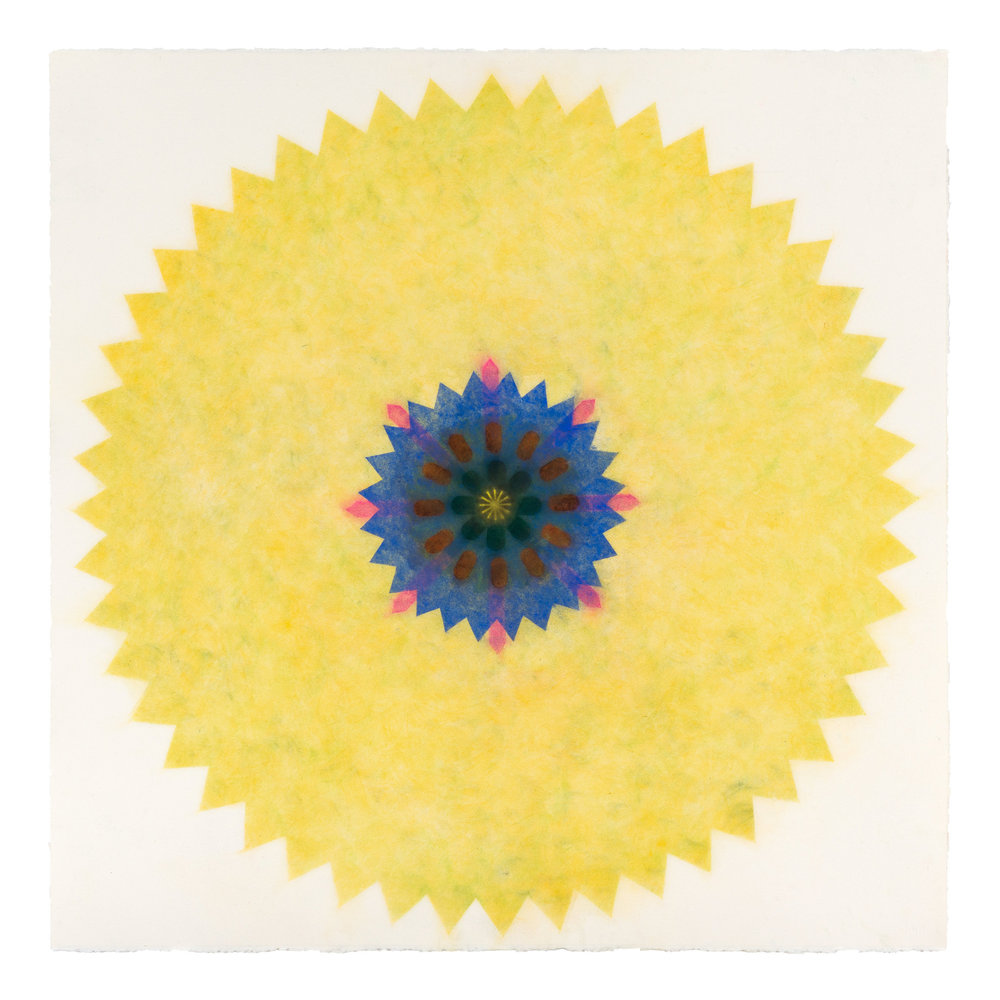 Pop Flower 31 , 2016, powdered pigment on paper, 30 x 30 inches (unframed), $3500. (unframed), 33.75 x 33.75 inches (framed), $3850. (framed) (sold)