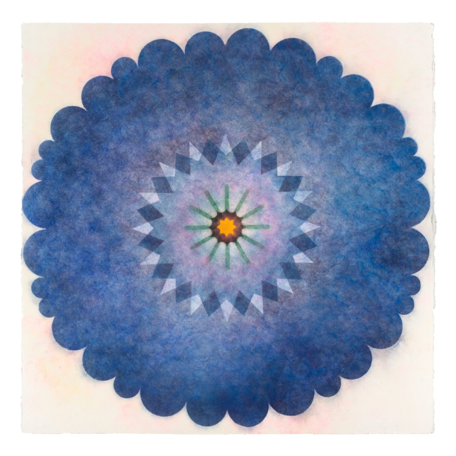 Pop Flower 32 , 2016, powdered pigment on paper, 30 x 30 inches (unframed), $3500. (unframed), 33.75 x 33.75 inches (framed), $3850. (framed) (sold)