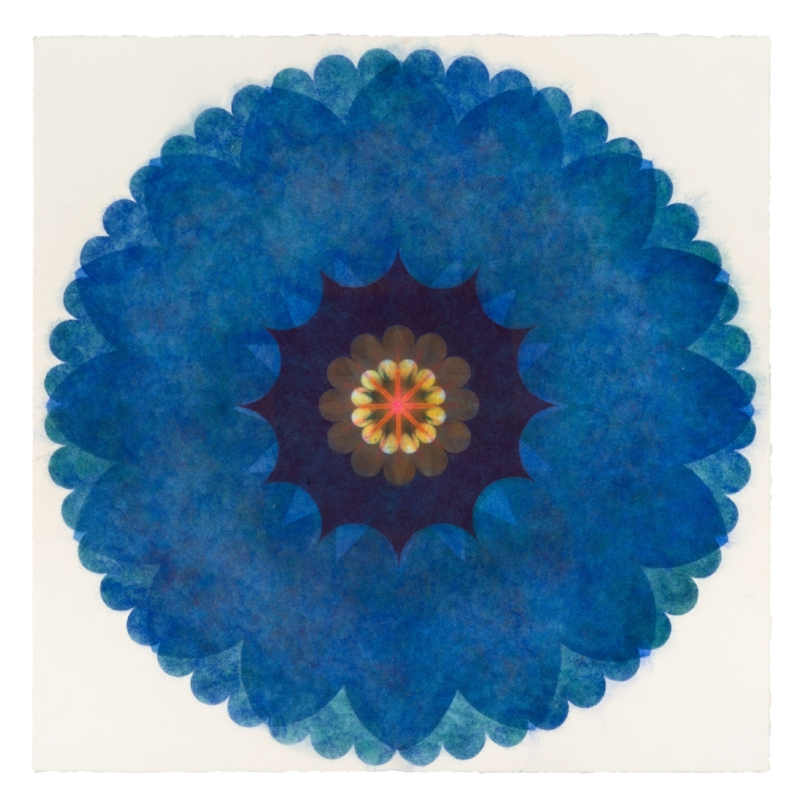 Pop Flower 33 , 2016, powdered pigment on paper, 30 x 30 inches (unframed), $3500. (unframed), 33.75 x 33.75 inches (framed), $3850. (framed) (sold)