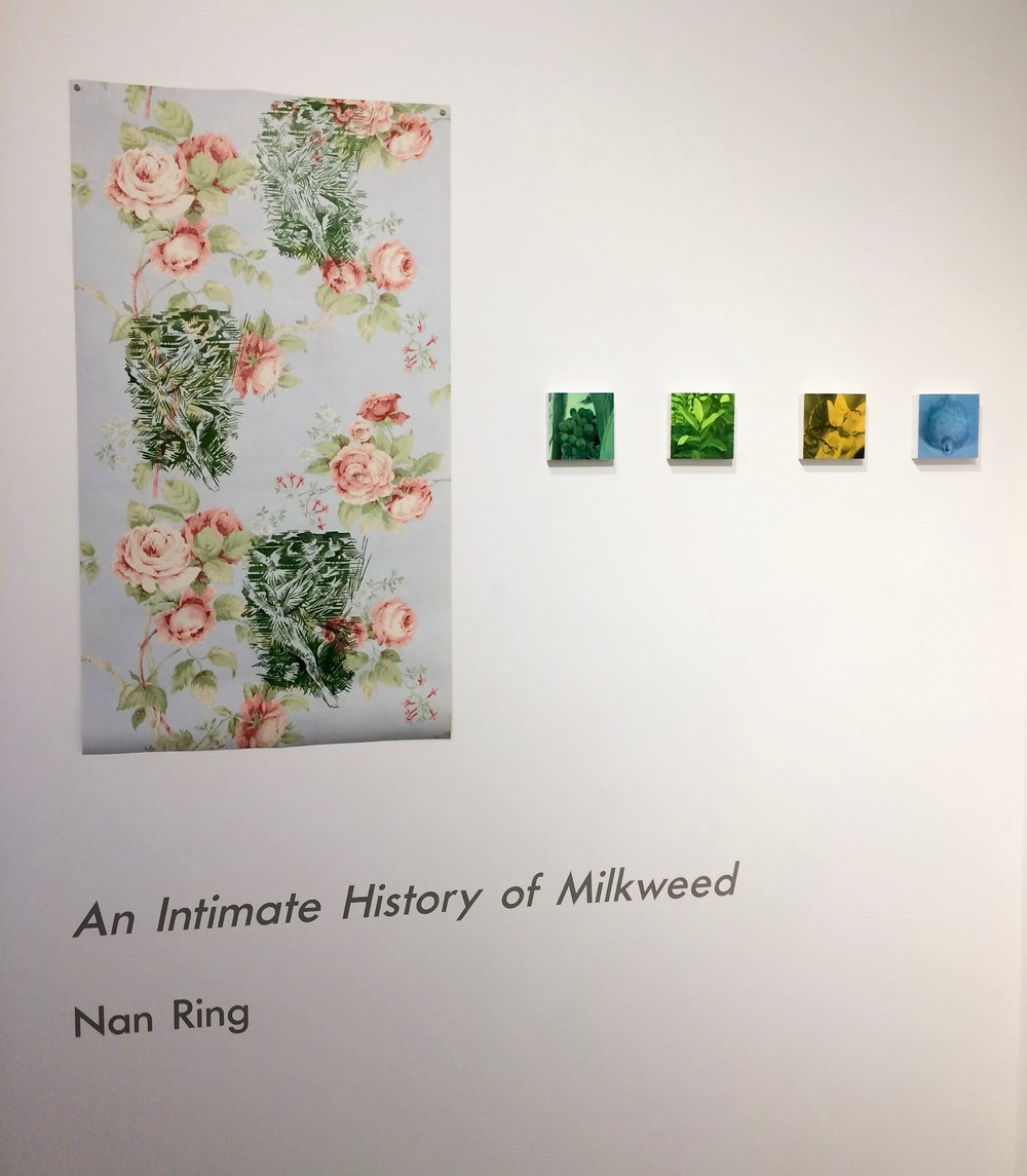 Project Space: An Intimate History of MilkweedNan Ring   Sep 17, 2016 - Oct 29, 2016