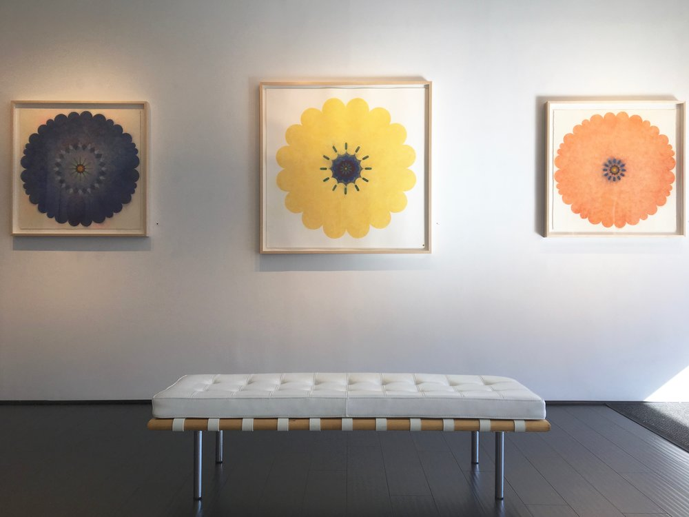 Polypetalous installation view