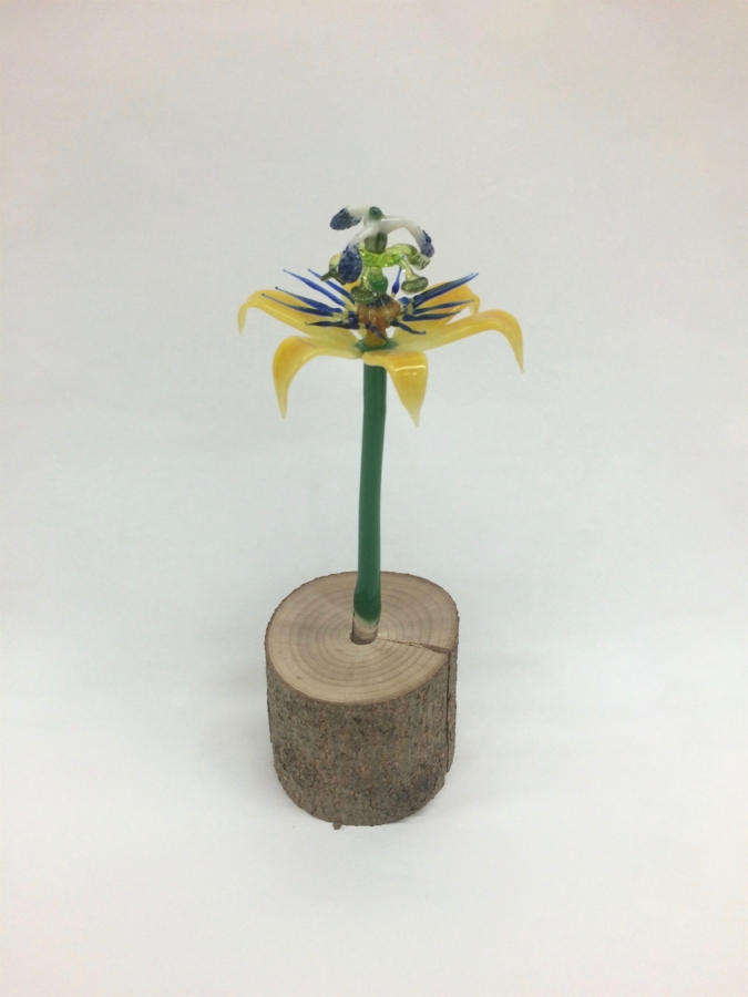 David Licata,  Passionflower , 2015, torch-worked borosilicate glass and driftwood, 9.5 x 3 x 2.75 inches, $400.