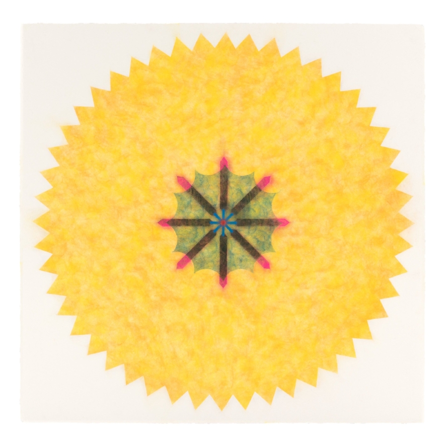 Pop Flower 34 , 2016, powdered pigment on paper, 30 x 30 inches (unframed), $3500. (unframed), 33.75 x 33.75 inches (framed), $3850. (framed)