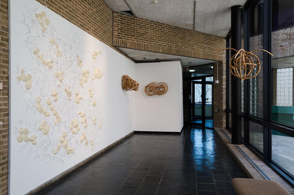 Installation view, Lorrie Fredette, Loren Eiferman