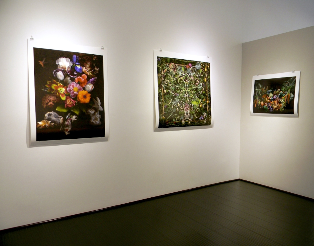 Installation view, Lisa A. Frank