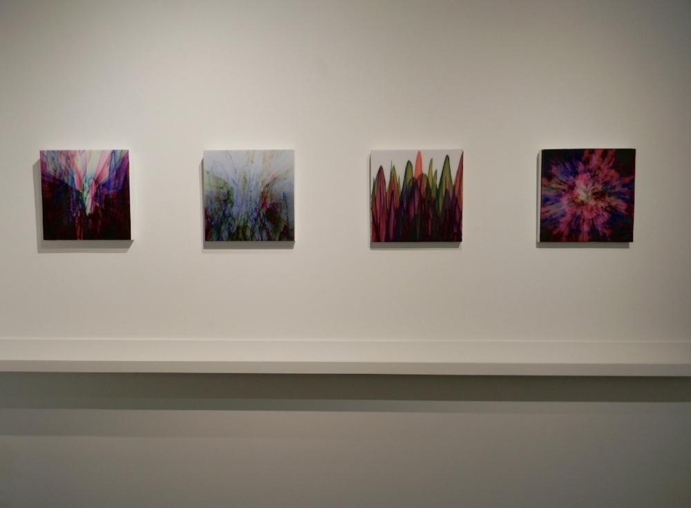 Installation view, Shane McAdams