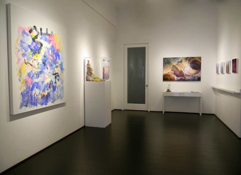 Installation view,Yolanda Sánchez, Jill Parisi, Shane McAdams, David Licata