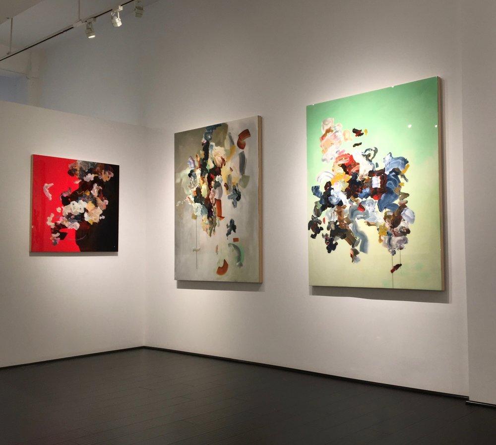 Installation view,  Focus, Janna Watson, Spring 2017