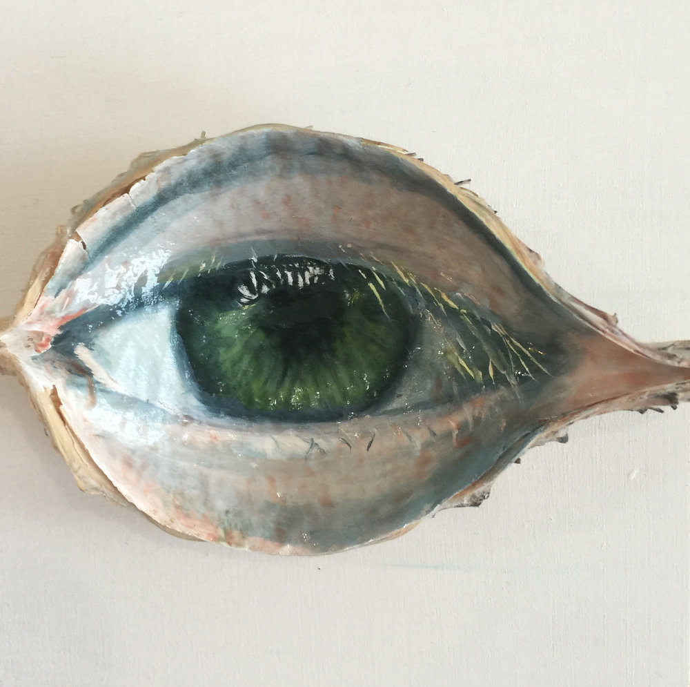 Max's Eye , 2016, oil on milkweed pod, 3 x 4 inches, $150.