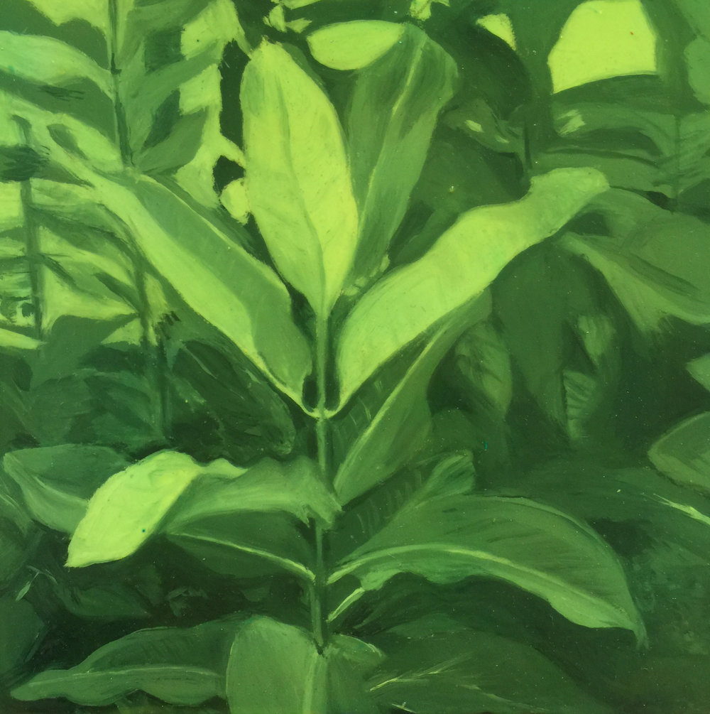 Milkweed Leaves , 2016, oil on panel, 4 x 4 inches, $350.