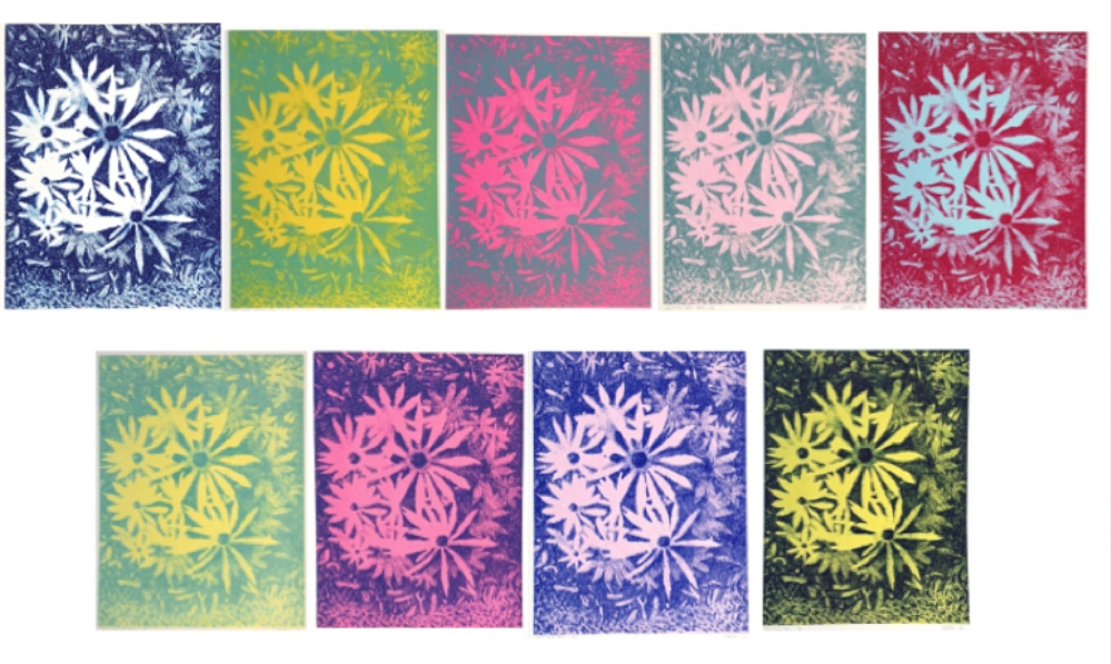 Solar Bloom Suite in Aqua, Blue, Dark Pink, Green, Light Green, Light Teal, Pink, Red/Blue, Teal, Yellow , 2009-2010, woodcut prints with colored inks on paper, 15.75 x 11.75 inches (image) (unframed), 19.75 x 15.5 inches (paper) (unframed), 25 x 18 inches (framed), $450. (unframed), $600. (framed)