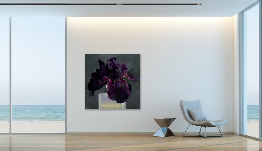 Installation view,  Purple Iris 2 , 2017, dye transfer on aluminum (photograph), 44 x 44 inches, edition 1/7, $5000.