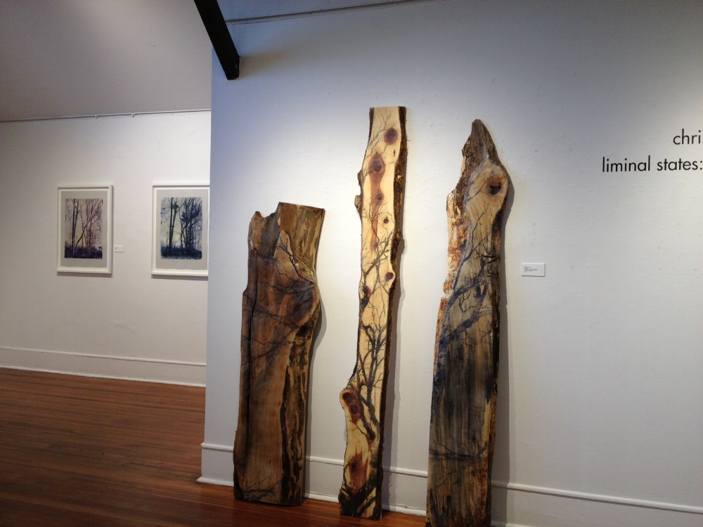 Installation view, 2013 solo exhibition  Liminal States: Beneath the Surface  at Silvermine Guild Arts Center, New Canaan, Connecticut