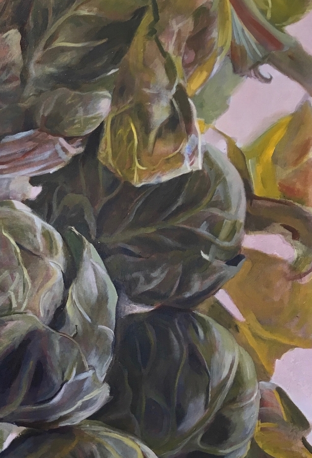 Brassica Oleracea Medulla  (detail), 2018, oil on canvas, 30 x 30 inches,  $5000. (each), $9000. (two), $13,500. (three)