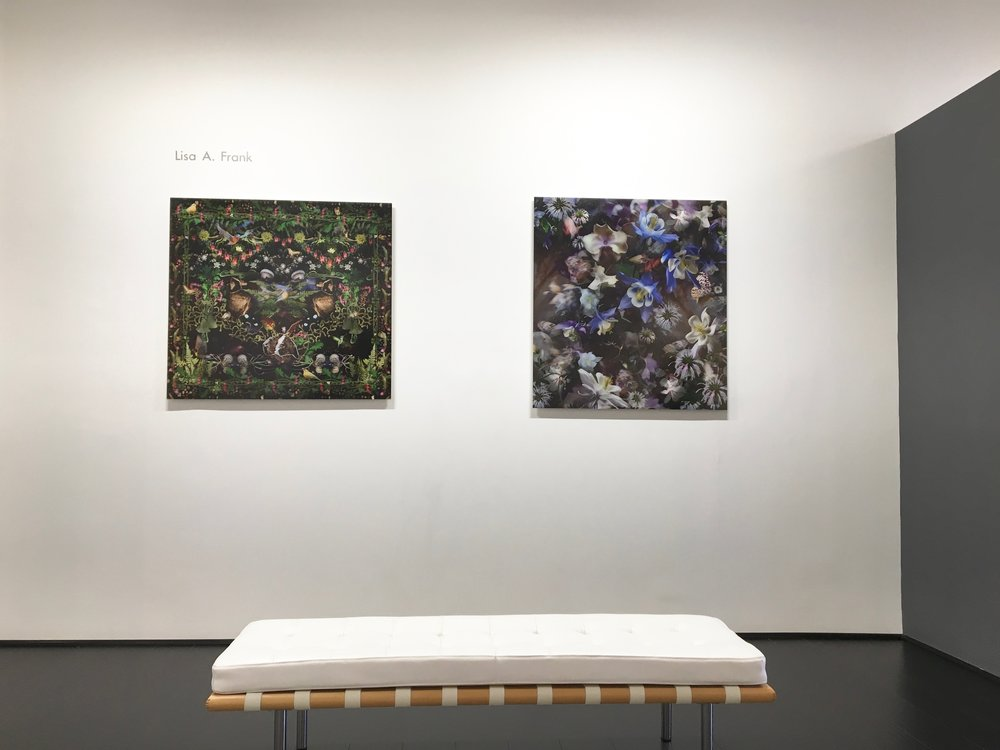 Lisa A. Frank, installation view