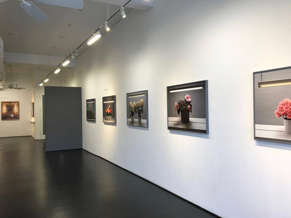 Jeffrey Sturges, Installation view