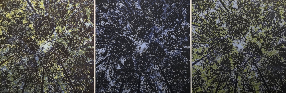Woodland Skyscape variation 77, 84, 82 , 2017 - 2018, woodcut print with colored inks on paper, edition 1/1 (monotypes), 36 x 36 inches (unframed), $3000. (unframed) (each)