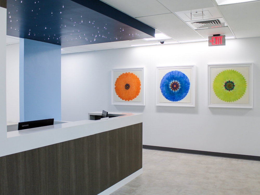 Installation view in the Parkview Tower at Barnes-Jewish Hospital in St. Louis, MO. Design by  Arch Design .