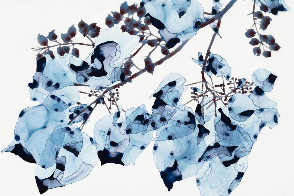 Blue Wash Cs1 , 2018, acrylic on mylar mounted on acrylic panel, 20 x 30 inches (unframed), 21.25 x 31.25 inches (framed), $4200. (framed)