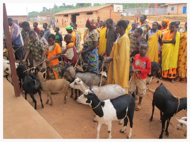 Burundi goat sharing 2.jpg