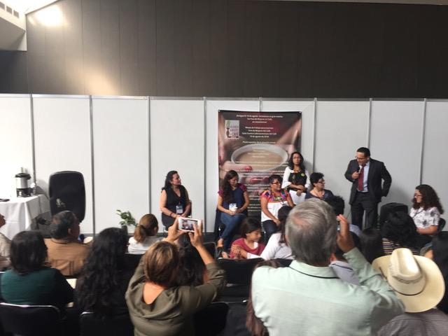 IWCA Mexico panel.jpeg