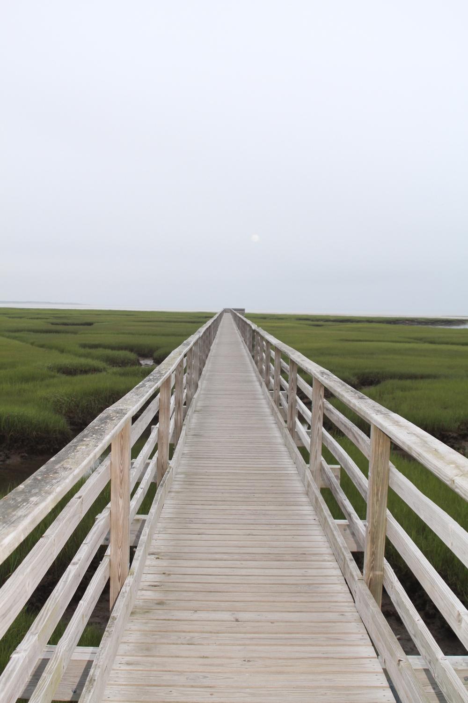 Cape Cod 2013 214.JPG