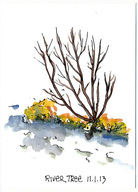 River Tree 2.jpg