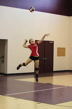 Volleyball_IMG_0818.jpg