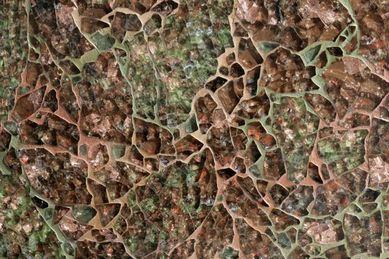 Moss - Earth