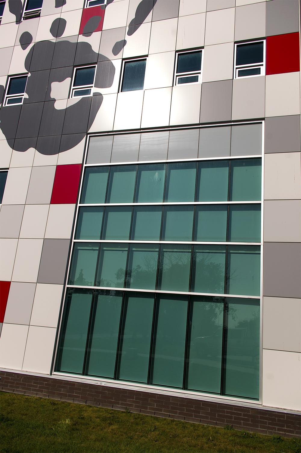 IMGP3315-colour-lg.jpg