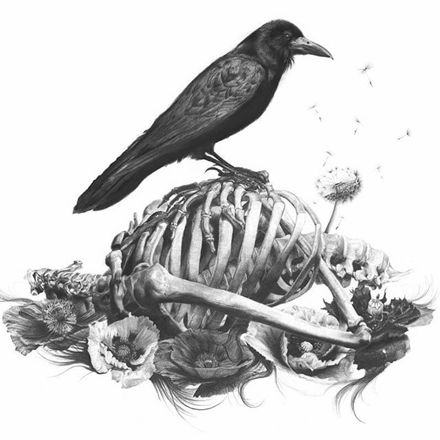 TGIF. Stand strong, until the afterlife. #graphite #charcoal #darkart #crow #death #muerte