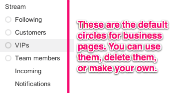 Default Google+ Circles for Business Pages