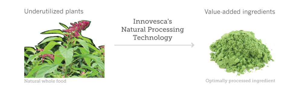 Innovesca_Technology