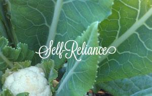 self-reliance.jpg