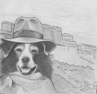 Tashi's sketch