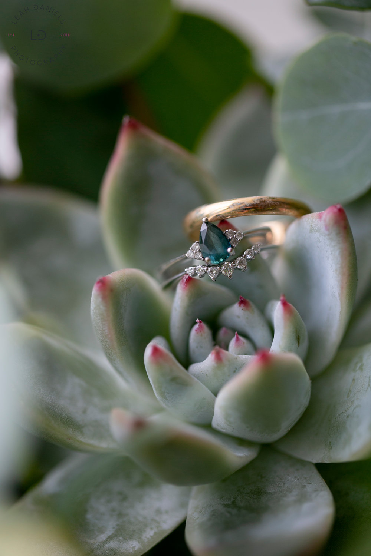 Springton Manor Farm Wedding - Wedding Rings