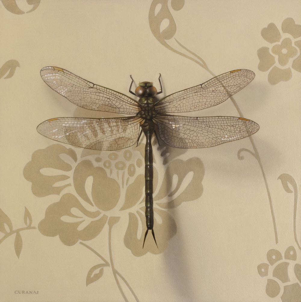 """Born a Dragon Fly"", oil on canvas, 6x6"""