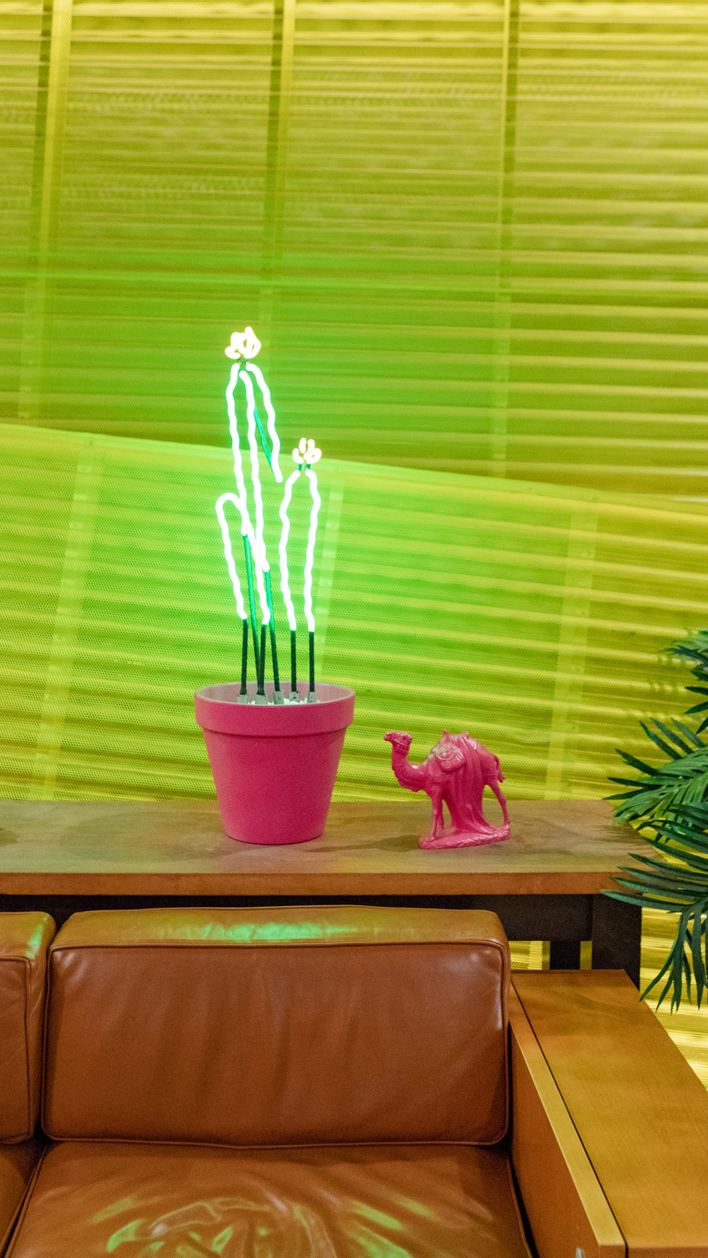 SaguaroPalmSprings-11.jpg