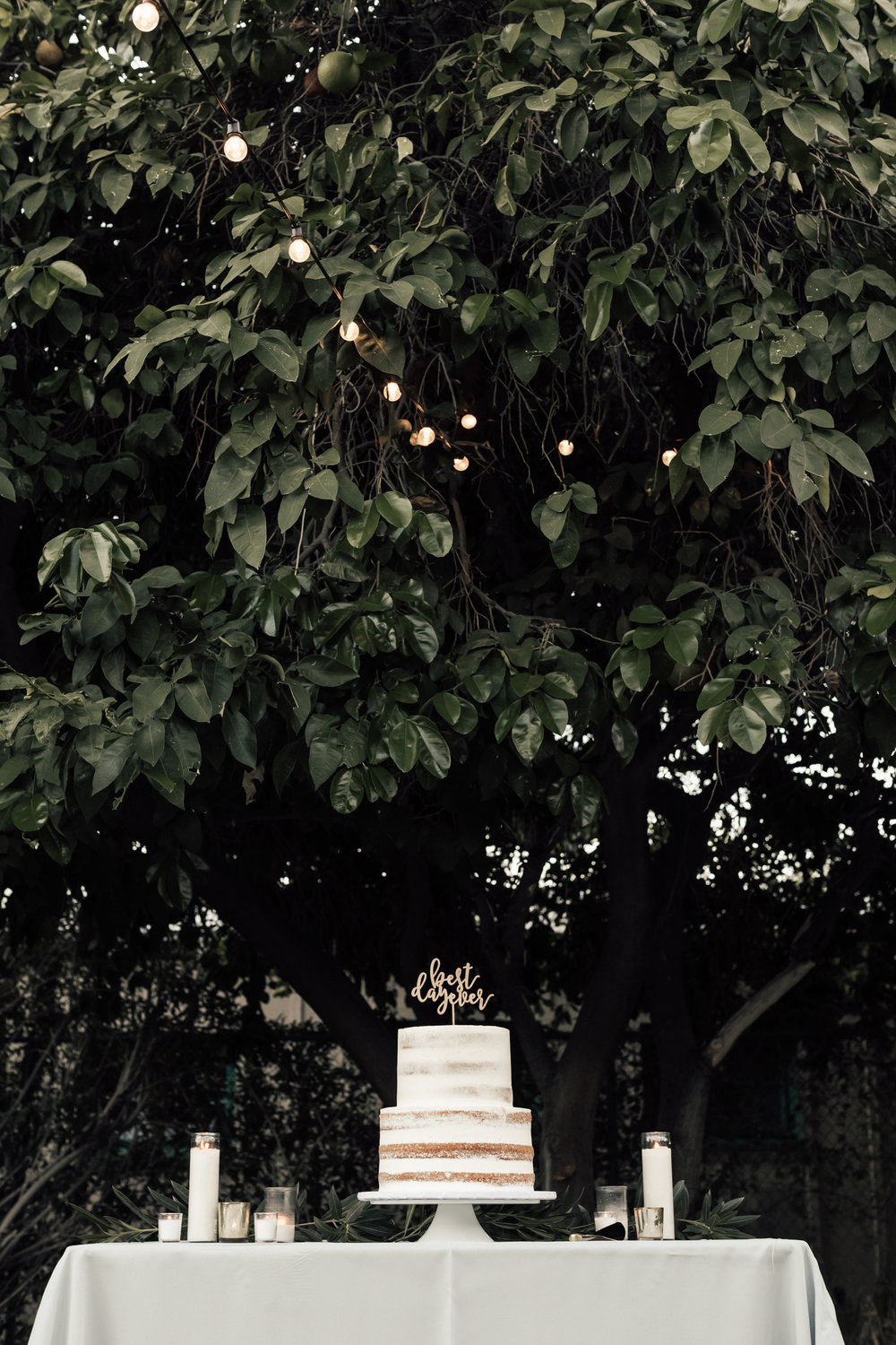HailleyHowardPhotography_Wedding_Casa+Cody+Laura-9667.jpg