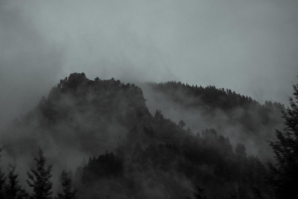 PortlandRoadtrip_PGIBBONS-8555.jpg