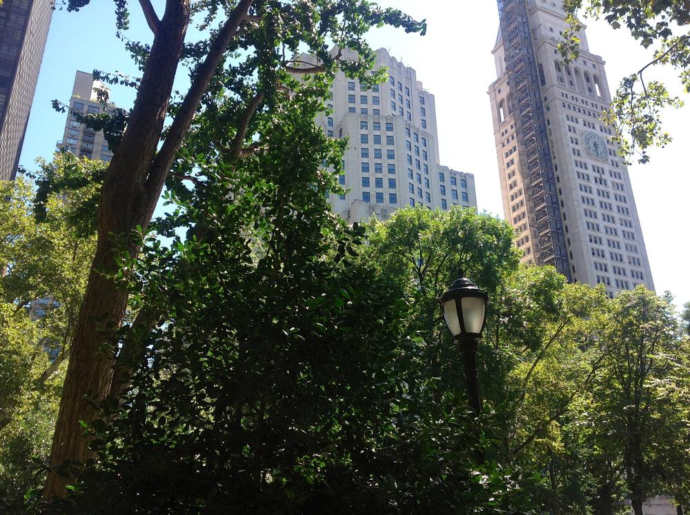 Madison Square Park, NY
