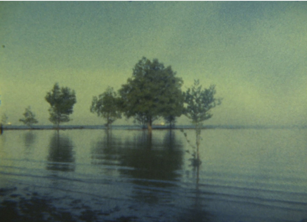 Simryn Gill, Untitled, 2004. Film Still from Super 8.