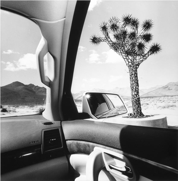 Lee Friedlander, California, 2008, Gelatin silver print, 15 × 15 in.
