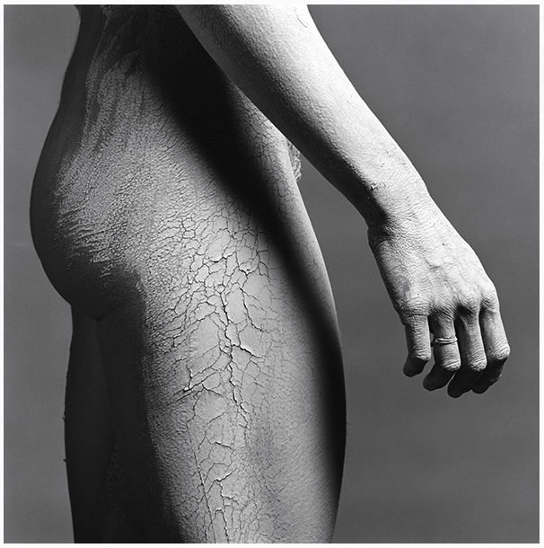 Robert Mapplethorpe. Lisa Lyon, 1982. Courtesy of The Robert Mapplethorpe Foundation.