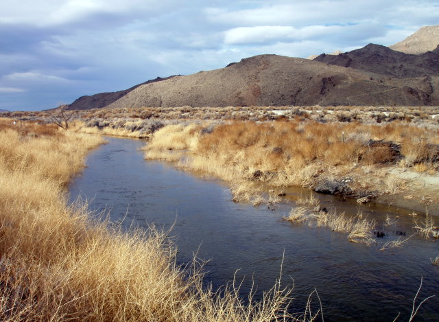 Owens River is being restored near the Blackrock Fish Hatchery