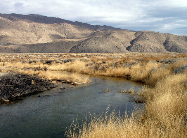 The Owens River is being restored near the Blackrock Fish Hatchery