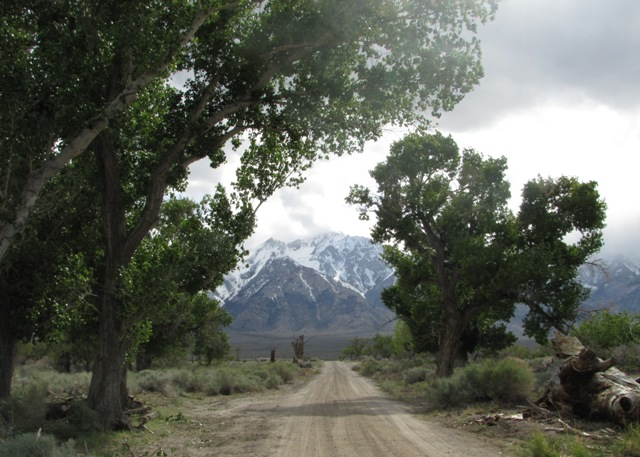 Road at Manzanar National Historic Site